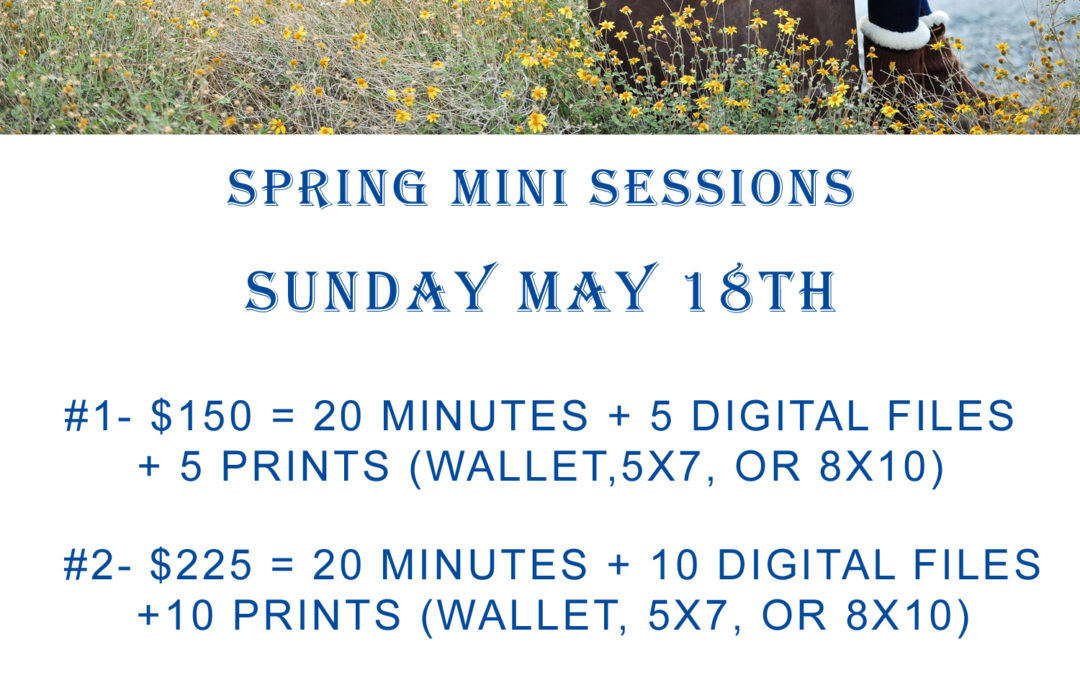 Spring Mini Session Details | Semi Annual Special Rate